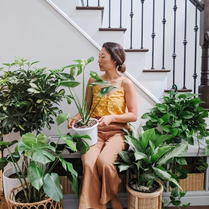 Cheryl Li, owner of The Modern Monstera, sit on a bench against a white staircase with a black metal railing. She is surrounded by potted plants and is holding one in her lap as well. She is wearing a yellow tank top with white polka dots and light brown pants.